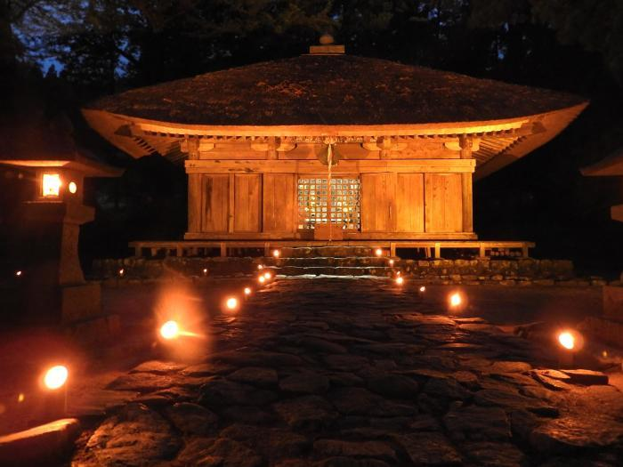 高蔵寺萤火虫节