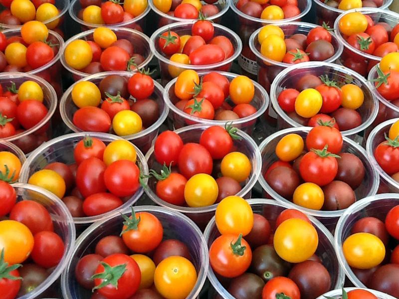 番茄收穫體驗(Suru-age農園)