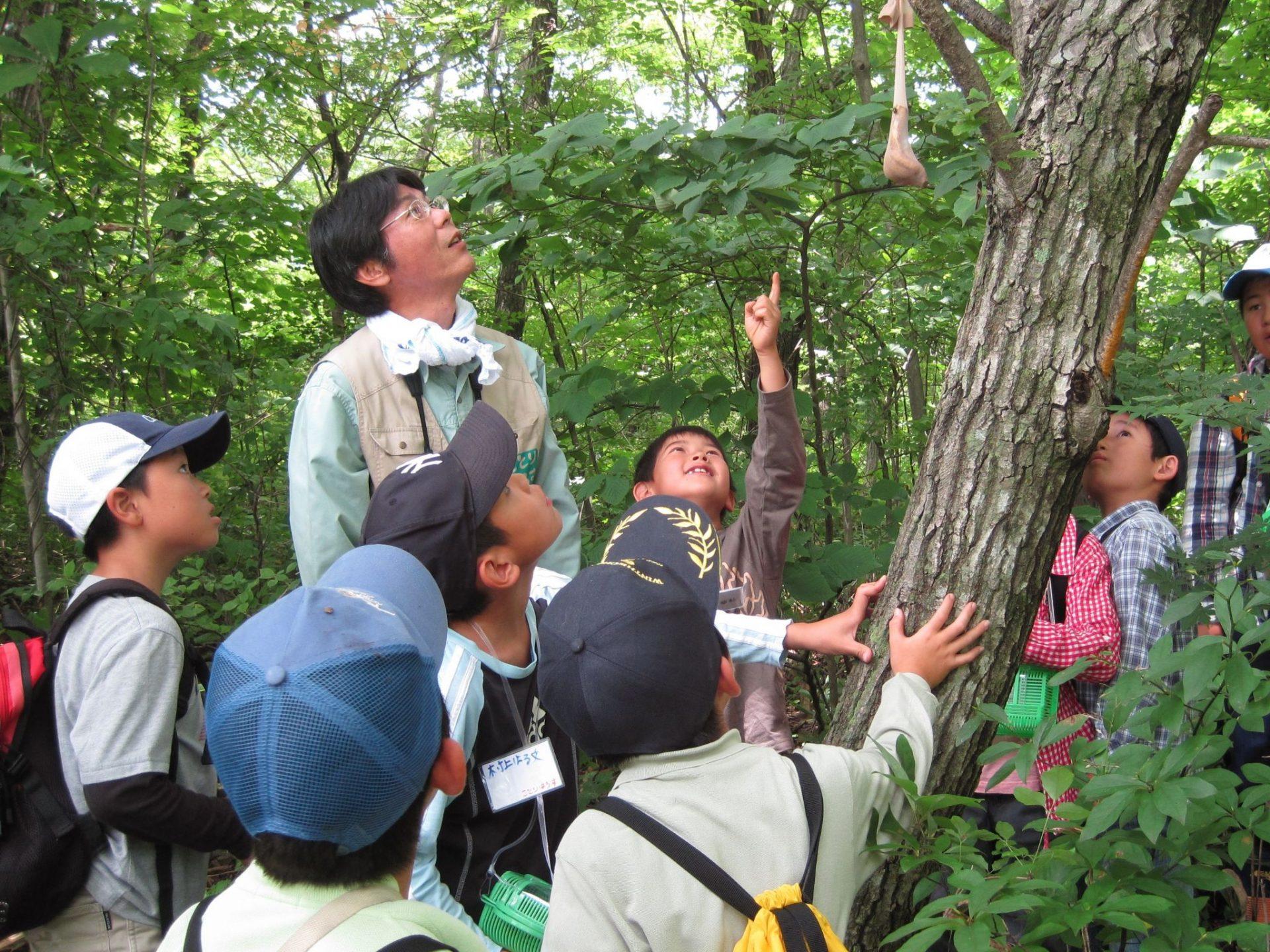 ことりはうす(宮城県蔵王野鳥の森自然観察センター)