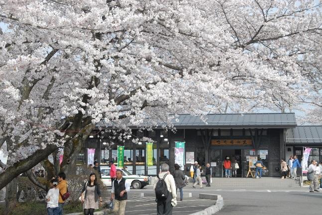 柴田町觀光物產交流館「樱花之里」