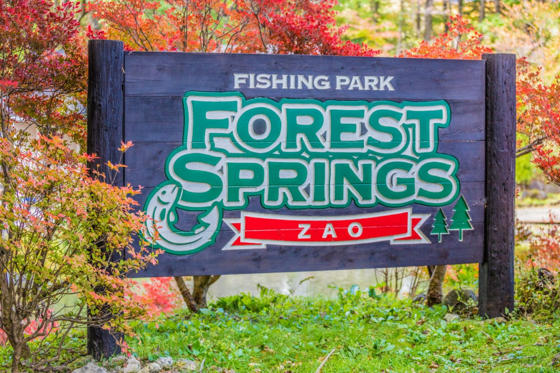 Zao Forest Springs