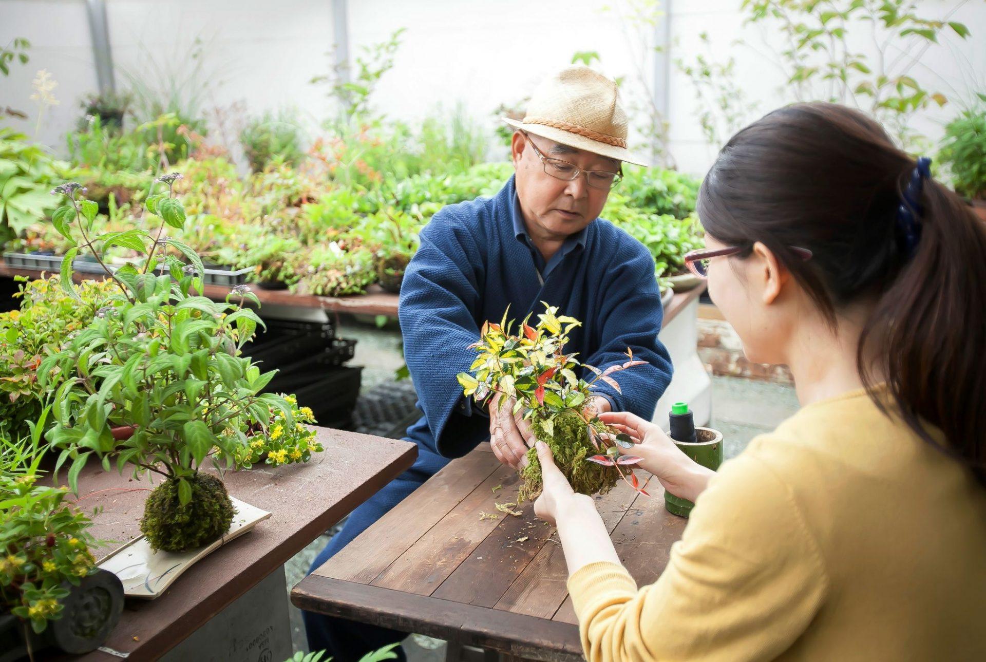 苔玉作り 四季庵