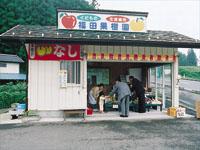สวนผลไม้ฟุคุดาคาจุ